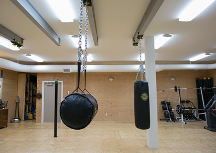 Punching bags hanging in gym room